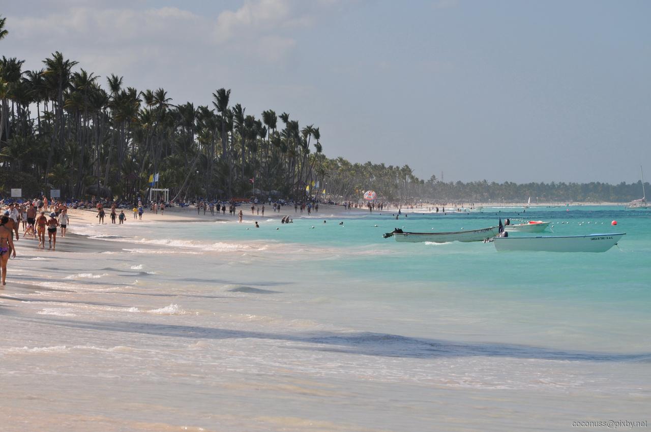 Фото Доминиканы в феврале