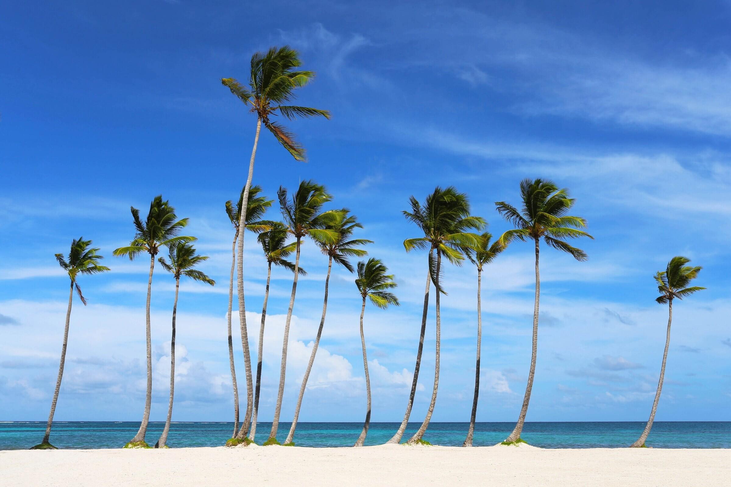 Фото Доминиканы в июле