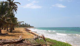 Обзор пляжа Макао в Доминикане