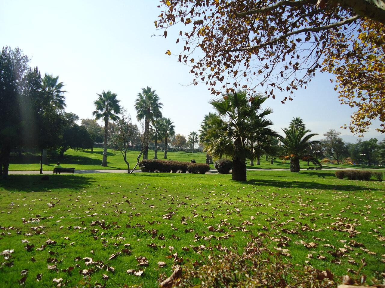 Фото парка Метрополитано