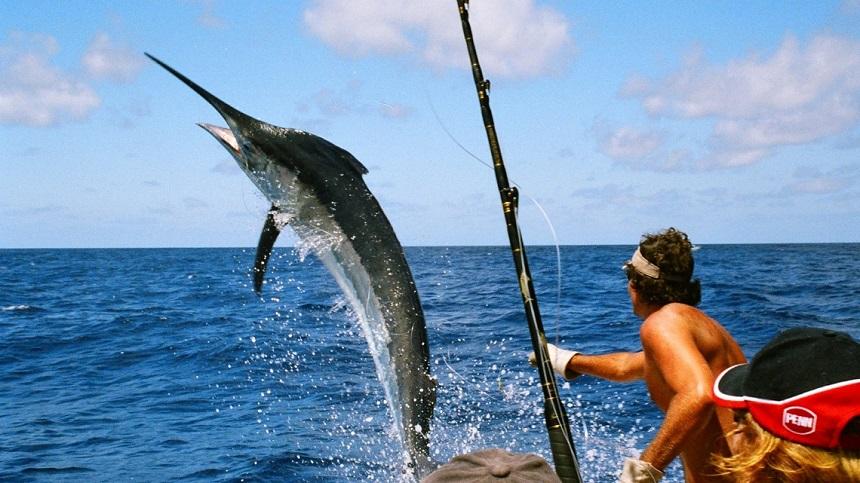 ТОП-20 лучших экскурсий Доминиканы рыбалка