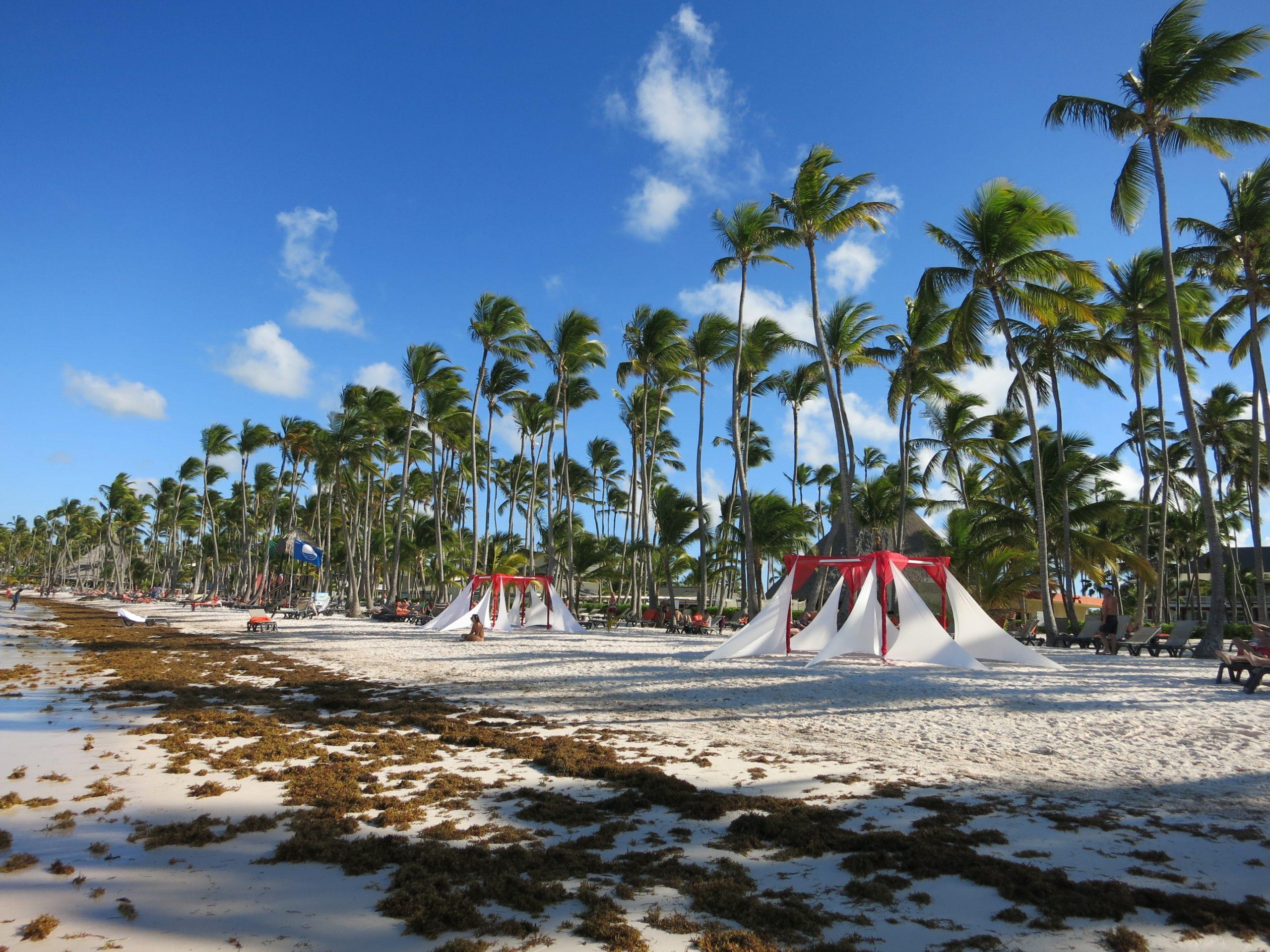 Какая погода в Доминикане в ноябре
