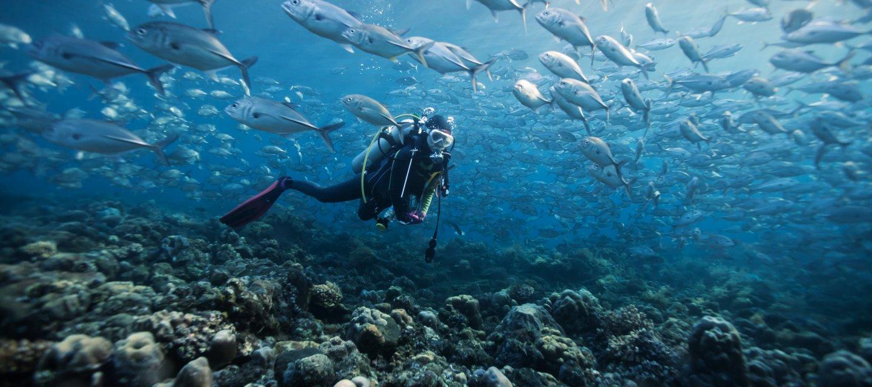 Подводная охота на острове