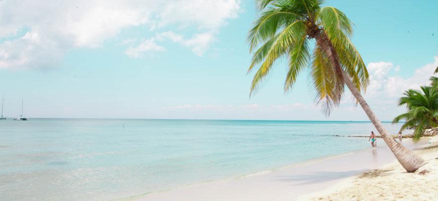 На фото остров Баунти