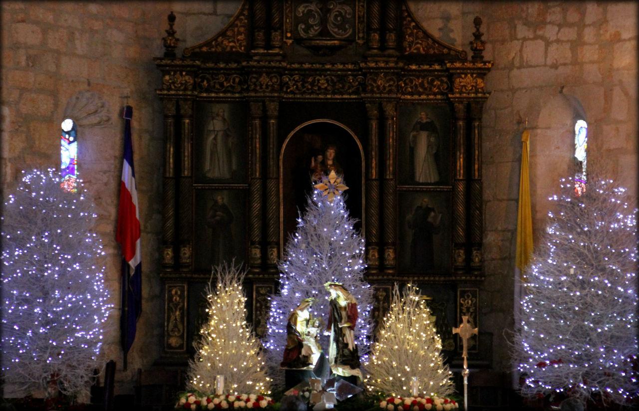 Фото рождественской елки в Доминикане