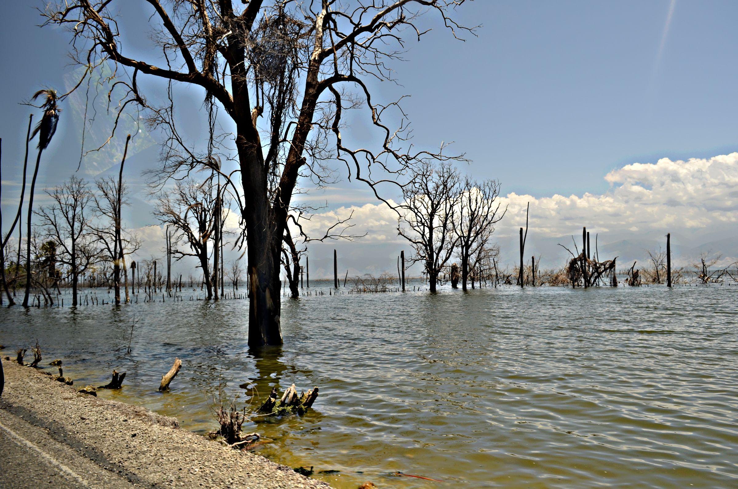 Фото пейзаж на озере