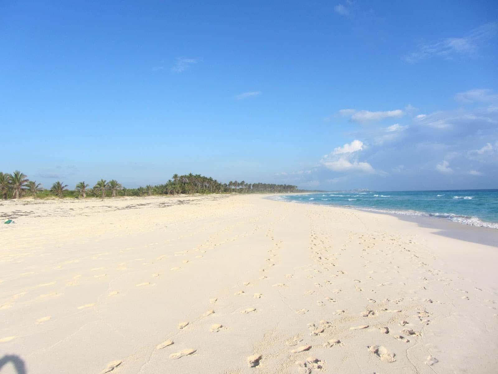 Фото диких мест на пляже